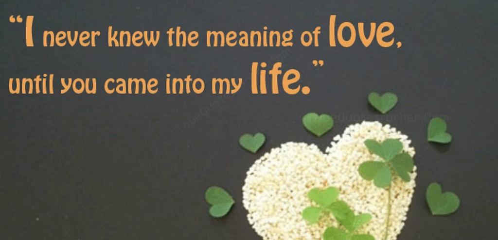 Cute Love U Quote 1 Picture Quote #1