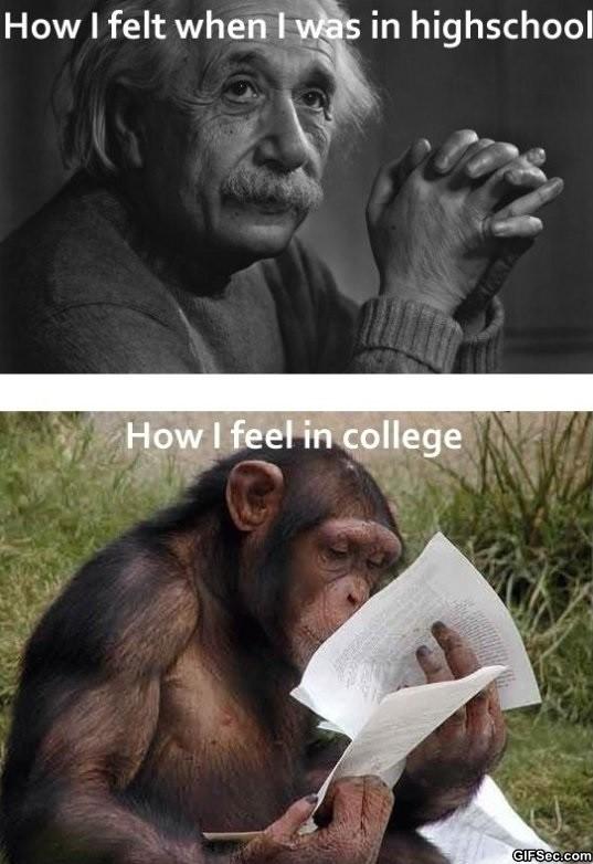 High School Vs College Quote 3 Picture Quote #1