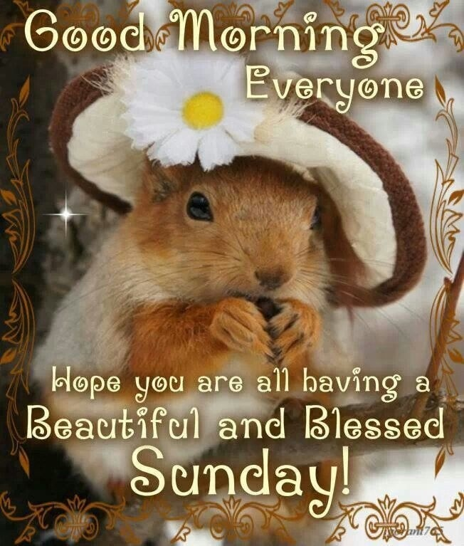 Happy Sunday Quote 5 Picture Quote #1