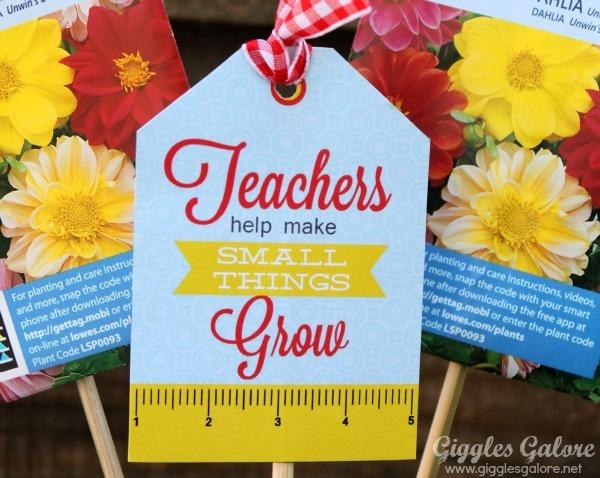 Teacher Appreciation Quote 15 Picture Quote #1