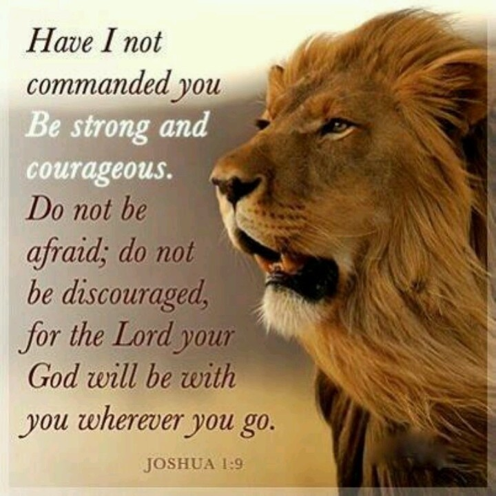 Bible Quote About Strength 9 Picture Quote #1
