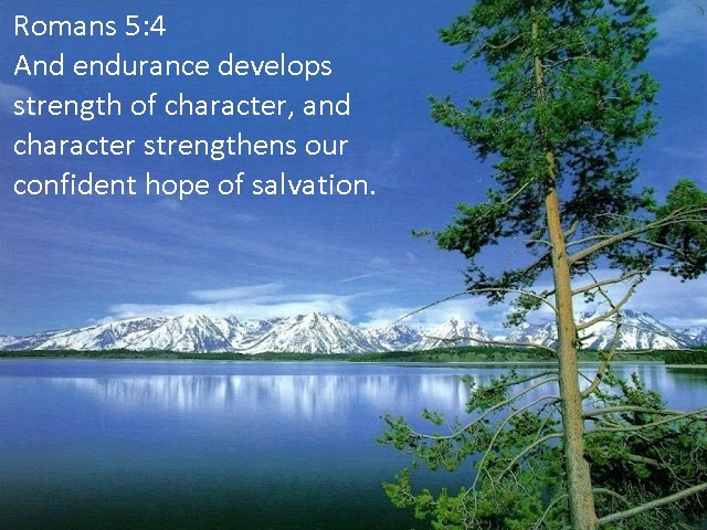 Bible Quote About Strength 14 Picture Quote #1