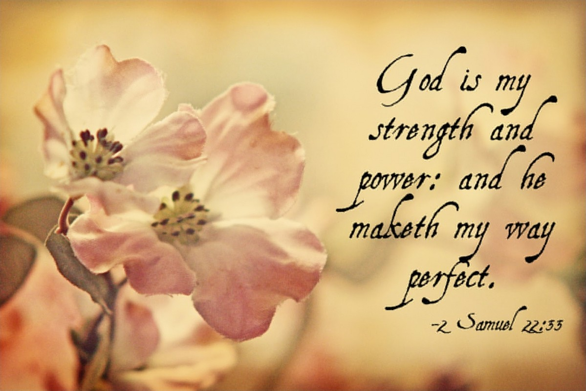 Bible Quote About Strength 15 Picture Quote #1