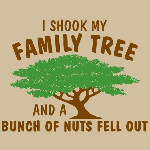 Funny Family Quote 2 Picture Quote #1
