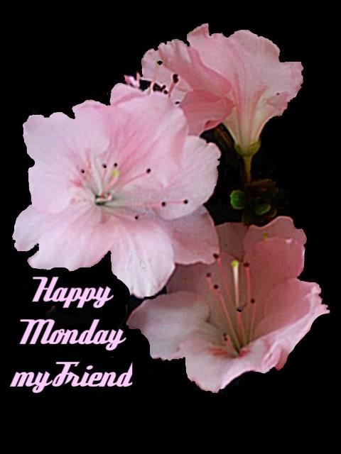 Happy Monday Quote 3 Picture Quote #1