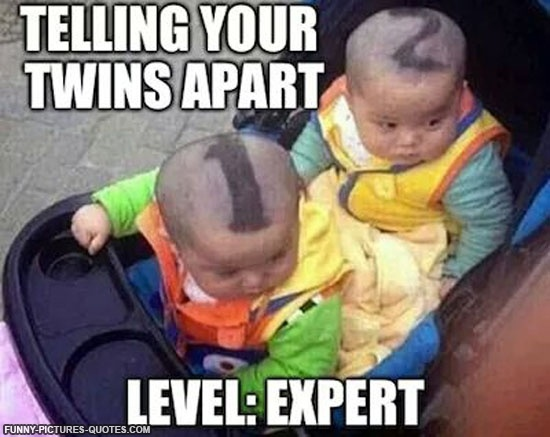 Funny Twin Quote Quote Number 610279 Picture Quotes