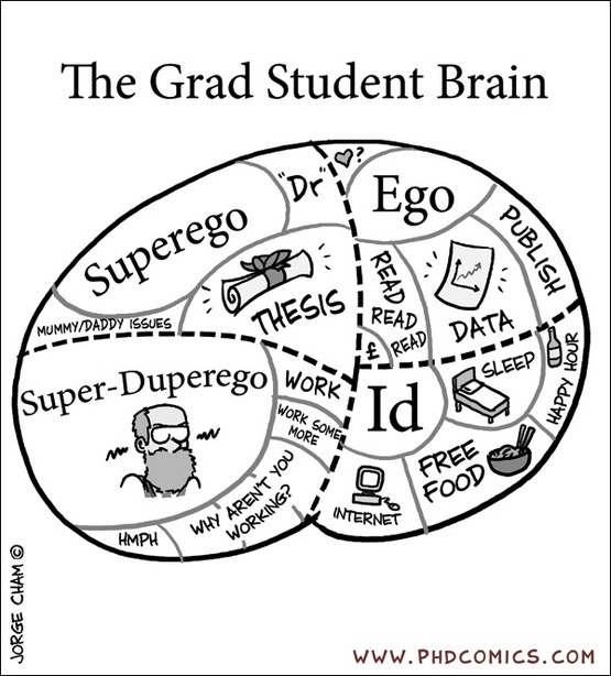 1000 Images About Academic Options For My Phd On: Psychology Sayings