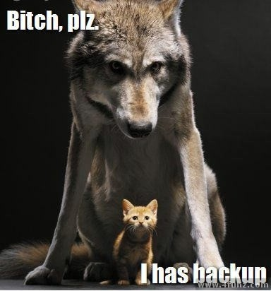 Funny Wolf Quote 2 Picture Quote #1