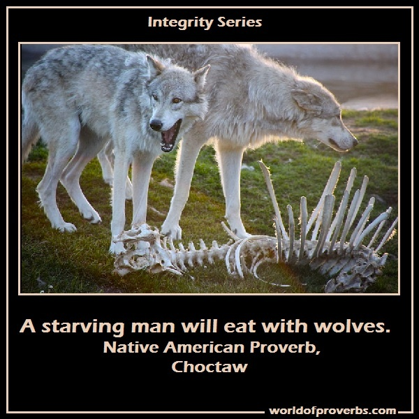 Native American Wolf Quote 4 Picture Quote #1