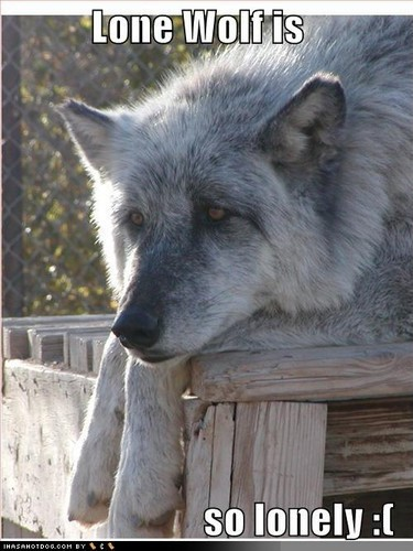 Wolf Quotes | Wolf Sayings | Wolf Picture Quotes - Page 2