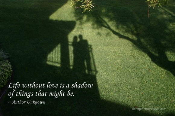 Shadow Quote 4 Picture Quote #1