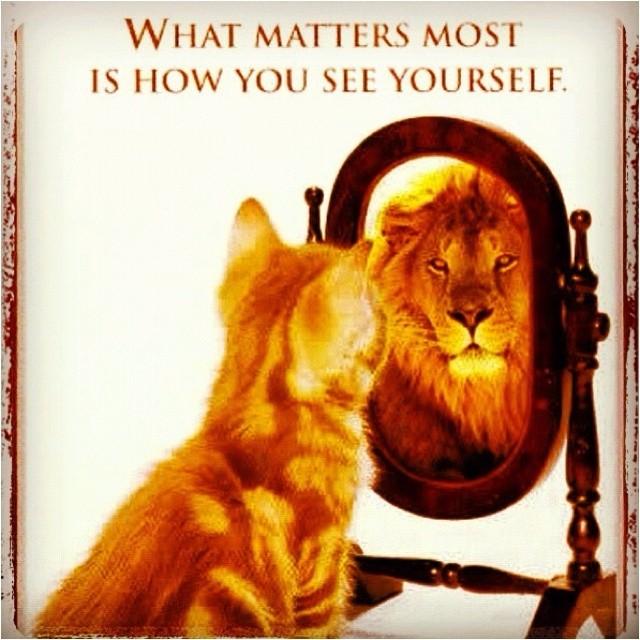 Confident Quote 6 Picture Quote #1