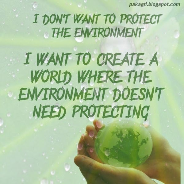 Environment Quote 1 Picture Quote #1