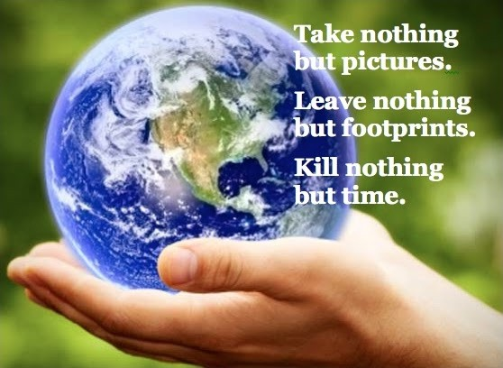 Environment Quote 2 Picture Quote #1