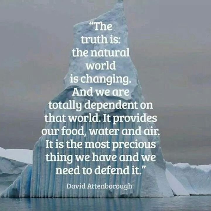 David Attenborough Environment Quote 2 Picture Quote #1