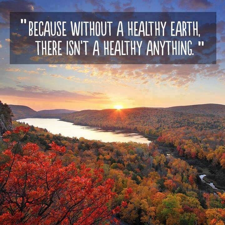 Healthy Environment Quote 2 Picture Quote #1