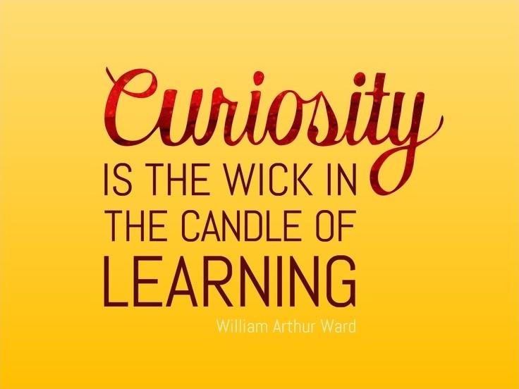 Curiosity Quote 3 Picture Quote #1