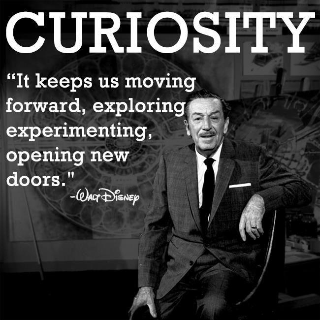 Curiosity Quote 4 Picture Quote #1