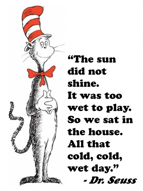 Cat In The Hat Quote 4 Picture Quote #1