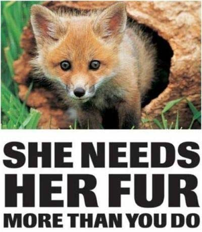 She needs her fur more than you do Picture Quote #1