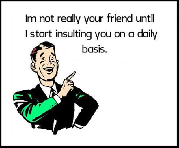 I'm not really your friend until I start insulting you on a daily basis Picture Quote #1
