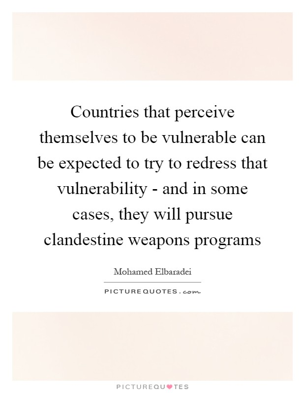 Countries that perceive themselves to be vulnerable can be expected to try to redress that vulnerability - and in some cases, they will pursue clandestine weapons programs Picture Quote #1