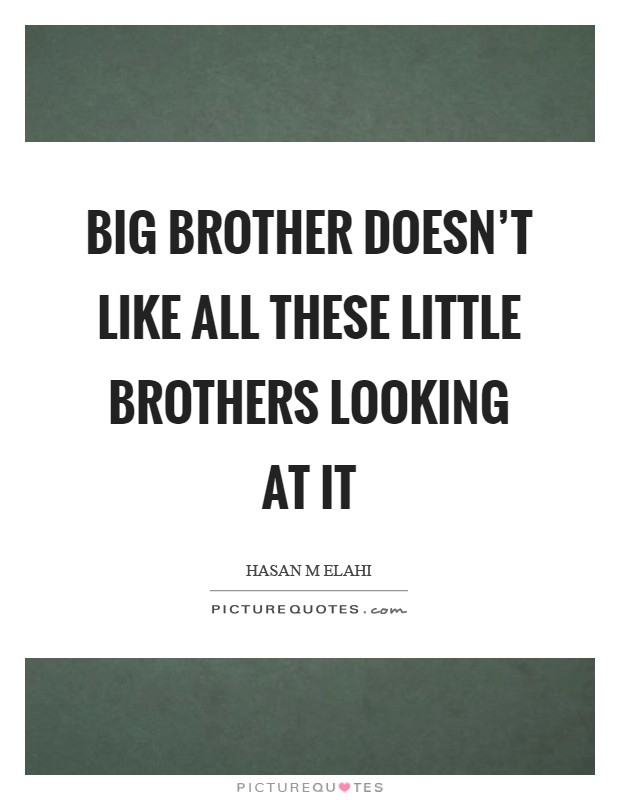 Big Brother doesn't like all these Little Brothers looking at it Picture Quote #1
