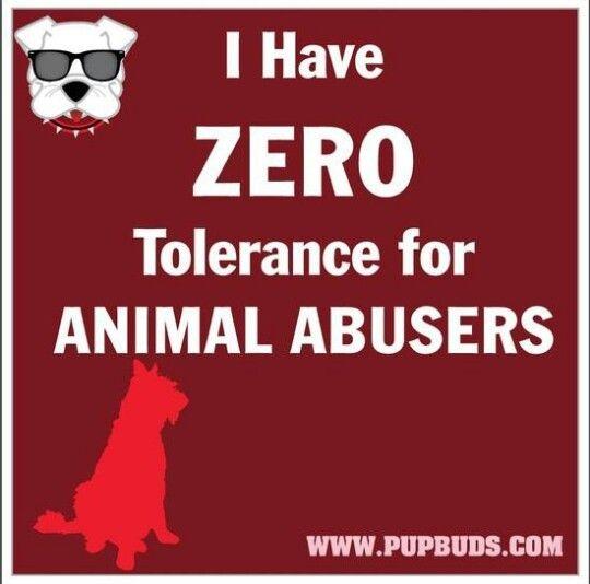 Zero Tolerance Quote 1 Picture Quote #1