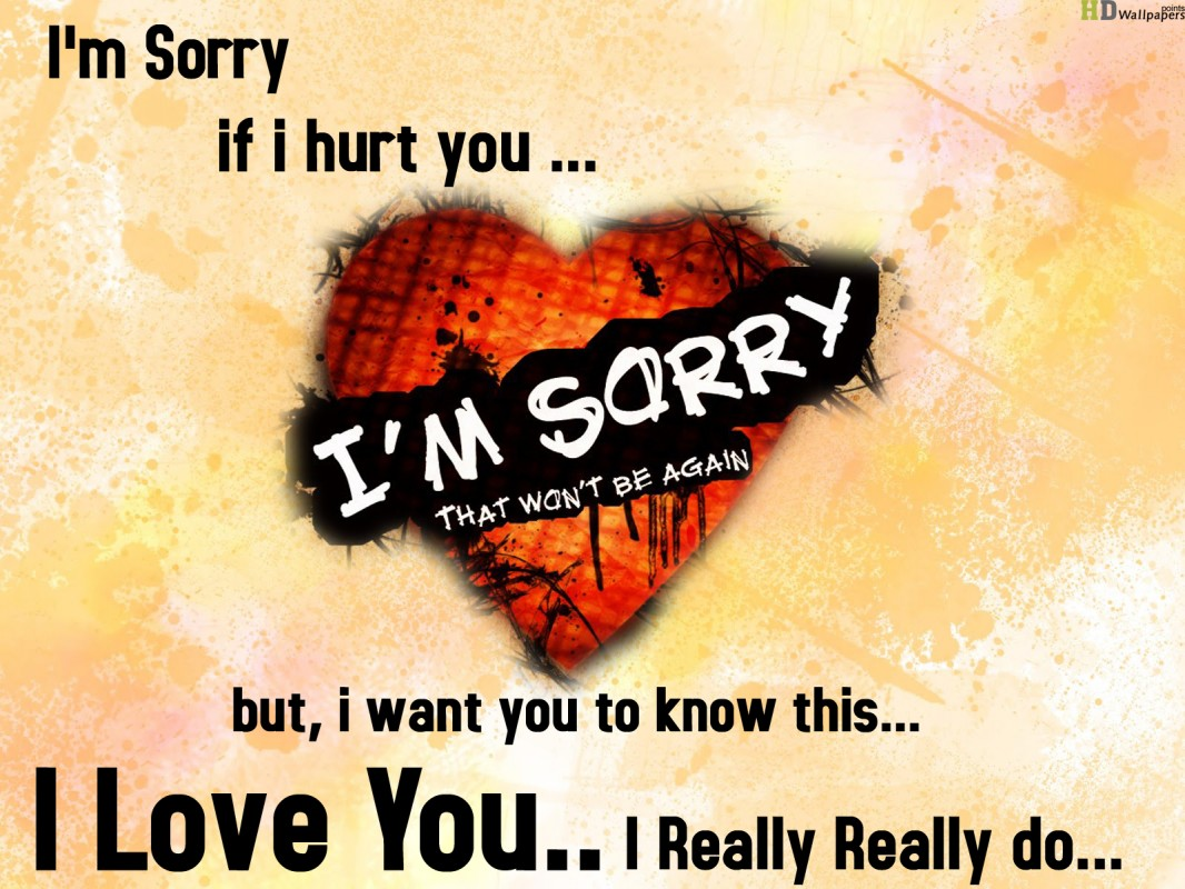 I Am Sorry Quote 9 Picture Quote #1