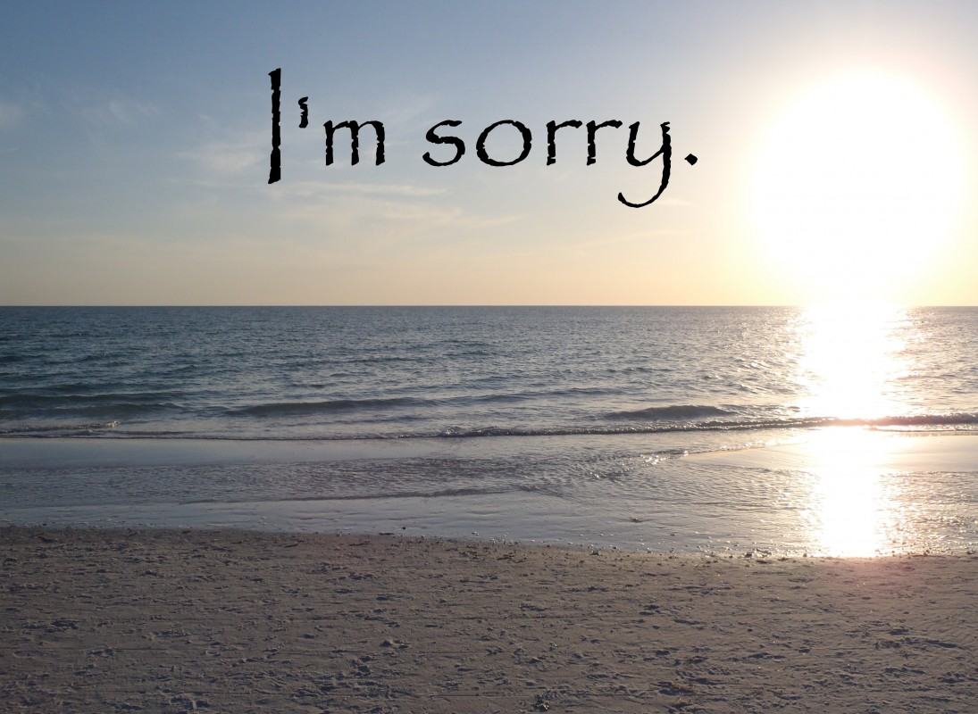 I Am Sorry Quote 11 Picture Quote #1