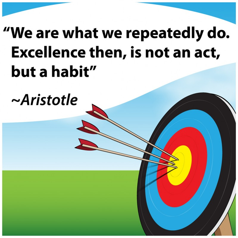 Excellence Quote 3 Picture Quote #1