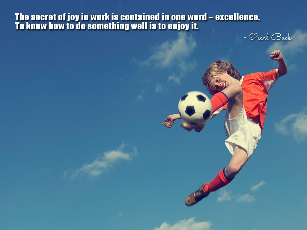 Excellence Quote 5 Picture Quote #1