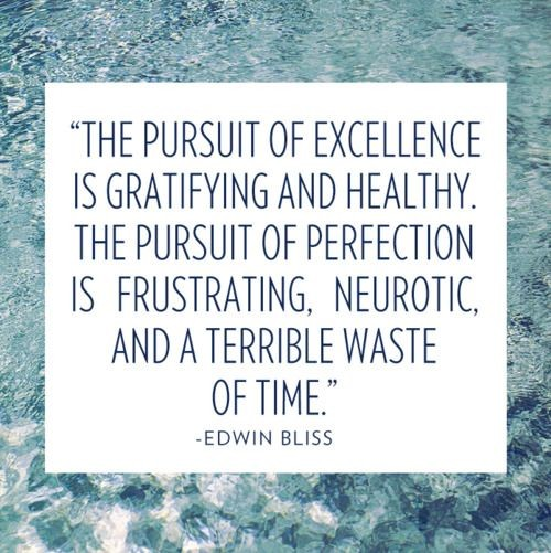 The Pursuit Of Excellence Quote 1 Picture Quote #1