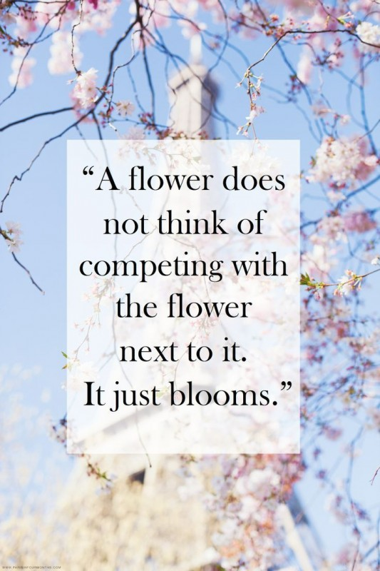 Competition Quote 3 Picture Quote #1