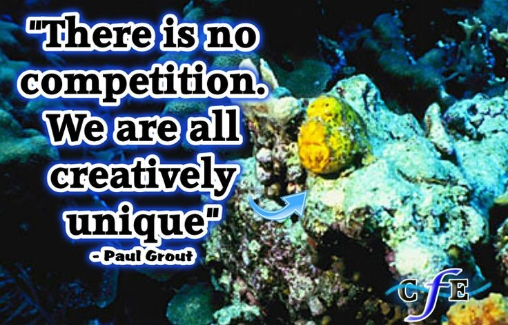 There Is No Competition Quote 1 Picture Quote #1