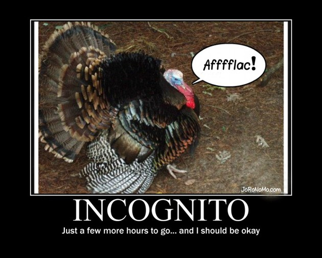 Funny Thanksgiving Quote 7 Picture Quote #1