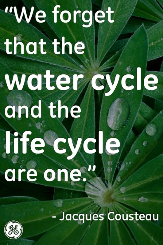Environmental Quote About Water 1 Picture Quote #1