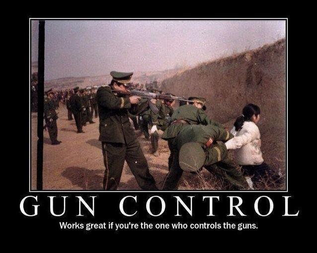 Gun Control Quote 5 Picture Quote #1