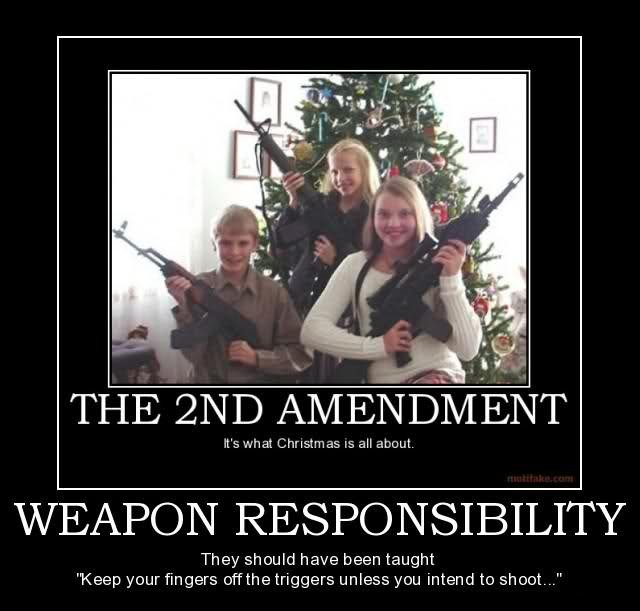 Funny Quote About Gun Control 1 Picture Quote #1