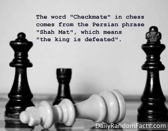 Chess Quote 10 Picture Quote #1