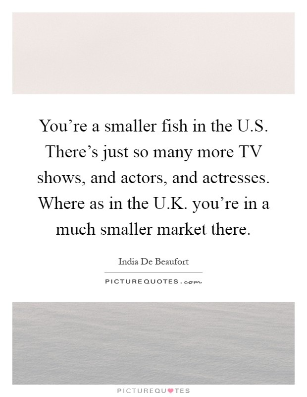 You're a smaller fish in the U.S. There's just so many more TV shows, and actors, and actresses. Where as in the U.K. you're in a much smaller market there Picture Quote #1