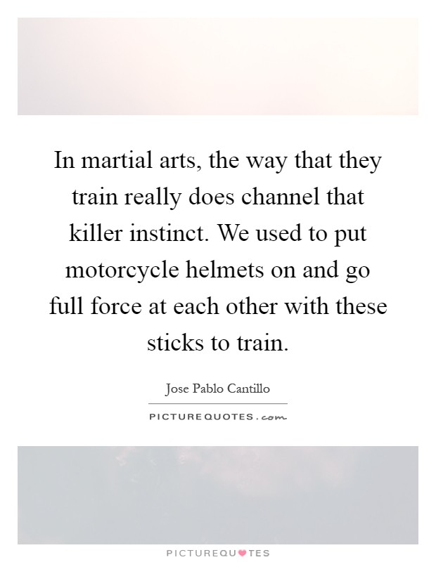 In martial arts, the way that they train really does channel that killer instinct. We used to put motorcycle helmets on and go full force at each other with these sticks to train Picture Quote #1