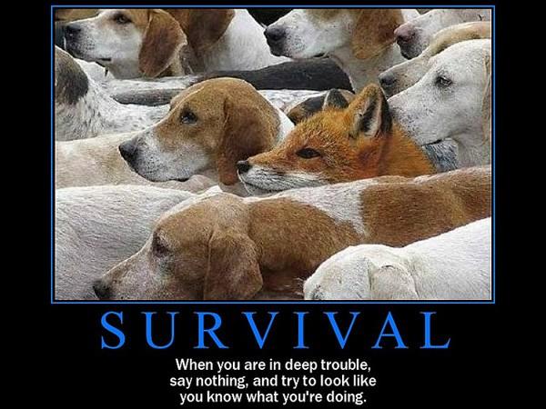 Survival Quote 10 Picture Quote #1