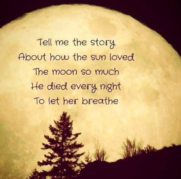 Hopeless Romantic Quote 3 Picture Quote #1