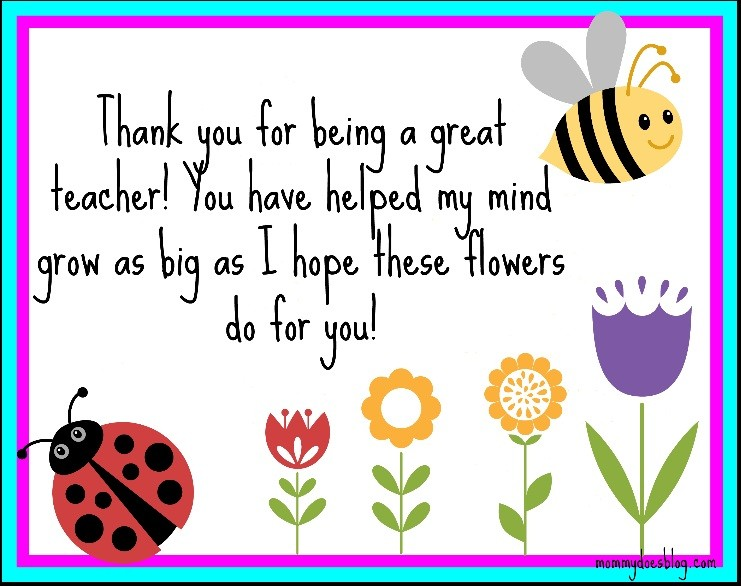 Thank You Teacher Quote 6 Picture Quote #1