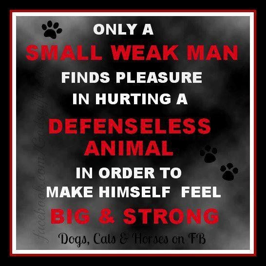 Coward Quote 1 Picture Quote #1