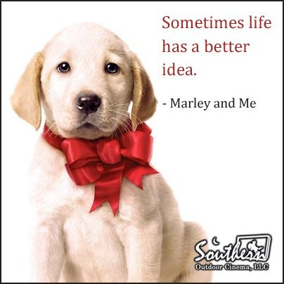 Marley And Me Movie Quotes & Sayings | Marley And Me Movie ...  Marley And Me M...