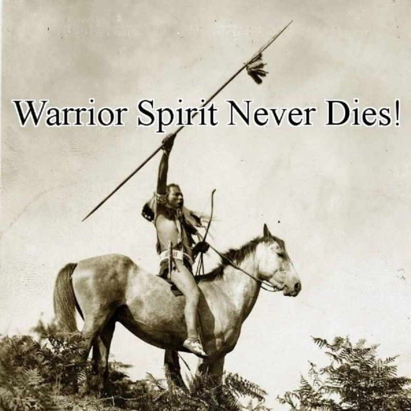 Warrior Quote 4 Picture Quote #1