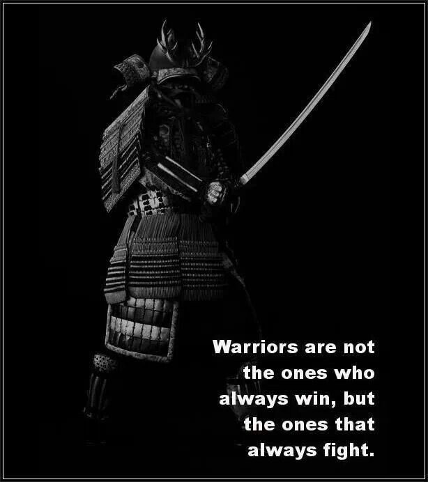 Warrior Quote 7 Picture Quote #1