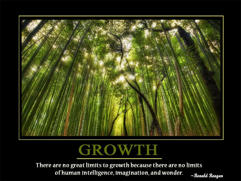 Growth Quote 1 Picture Quote #1